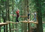 Lezecké lanové centrum v lese